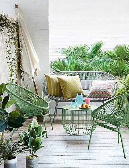 Make your garden a tropical oasis