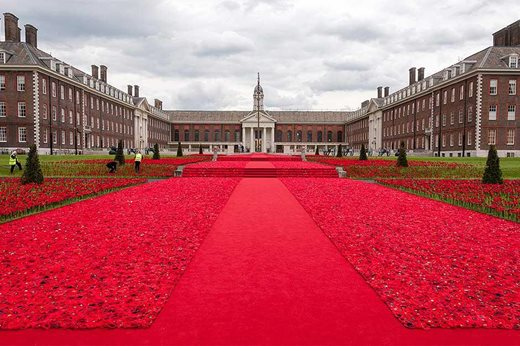 poppy display chelsea flower show 2016